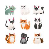 Super Cute Cartoon Cats Icon Set