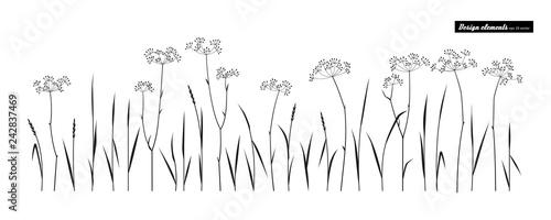 Meadow grass.