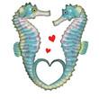 hippocampe  , illustration, saint Valentin,  dessin animé, mer, aimer, isolé, amour, animal, cœur, ailes, conception, eau, art, blanc, océan, jouet, symbole, 3-d, coloré,  nature, bleu, vert, sous-mar
