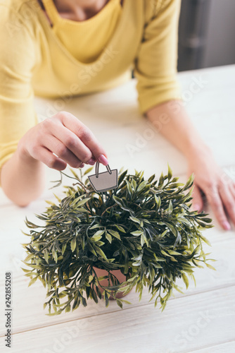 cropped view of woman holding toy paper bag near green plant