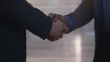 Close up shot of two unrecognizable business partners of different ethnicities shaking hands when greeting each other in office - 242857285