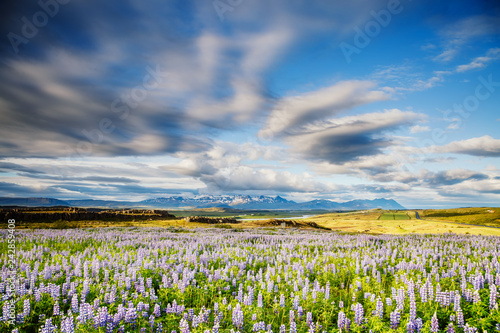 Typical icelandic panorama. Location Iceland, Europe.