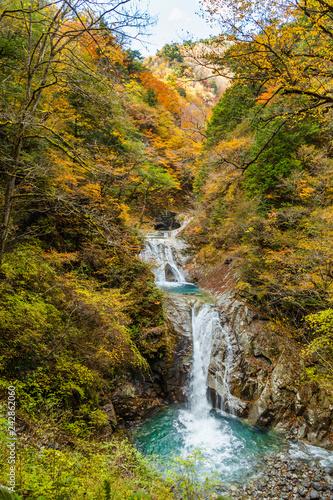 西沢渓谷の鮮やかな紅葉と滝