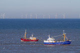 two fishing boats with seagulls on the north sea in front of wind wheels - 242872457