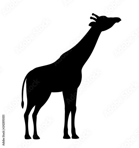Silhouette giraffe black icon isolated white background vector