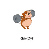 Gym dogs