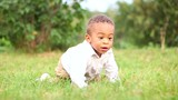 Funny little kid playing outside. Cute little afro-american boy are playing and crawls on grass in the lawn. - 242939481