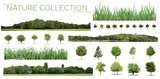 Very high definition Treeline, grass and tree collection isolated on a white background - 242951260