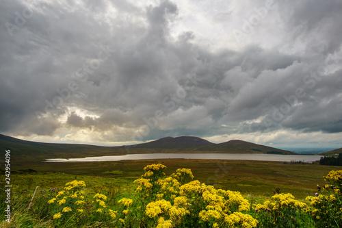 obraz PCV Nordirland Landschaft
