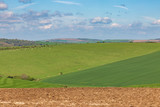 South Downs Landscape during Spring - 242967896