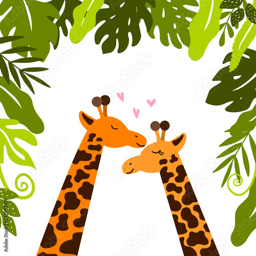 Cute giraffes cuddle under tropical leaves.