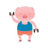 Vector pig cartoon character is lifting weights isolated on white background. Cartoon emotions