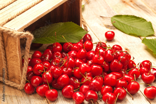 ripe sweet cherry spilled out of the basket