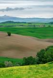 Tuscany, Italy - 242992480