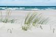 summer Baltic sea - 242996824