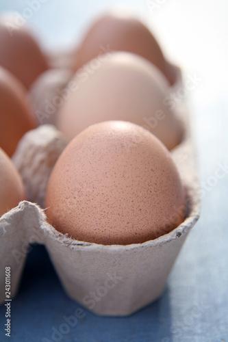 chicken eggs closeup