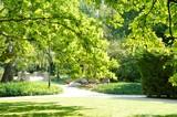 Park in Warsaw - 243013005