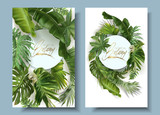 Vector round banners with green tropical leaves - 243021244