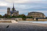 Notre Dame de Paris cathedral view from the Seine bank, Paris, France