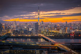 Tokyo sky tree and tokyo city view in evening