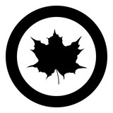 Maple leaf silhouette icon black color illustration in circle round