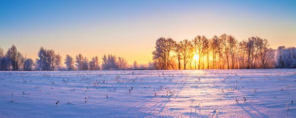 winter landscape panorama with sunrise © yanikap