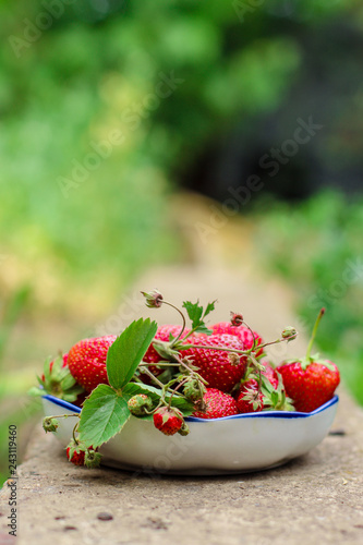 strawberry red - ripe berries, juicy. copy space. top