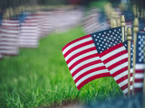 American flags on grass close up - 243153624