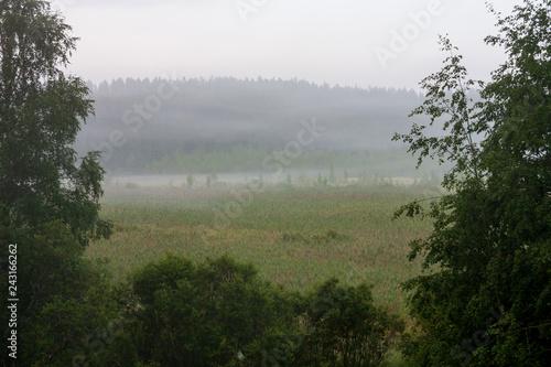 Grassland field landscape at foggy morning