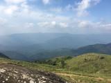 ponmudi hills kerala - 243170485