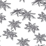 Vector vintage seamless pattern with cardamom isolated on white. Spice in sketch style. Hand drawn engraving texture - 243177085