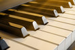 Sun beams fall on the black and white keys of the pianist.