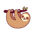 Cute hanging sloth - 243211684