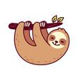 Cute hanging sloth - 243211684