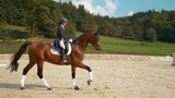 SUPER SLOW MOTION: English dressage horseback rider galloping on her beautiful stallion during a competition. Young Caucasian woman in formal clothes riding her chestnut gelding around the manege. - 243227495