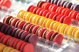 color macaroons background - 243250286