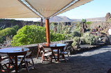 Giardino dei Cactus, Lanzarote - 243252682