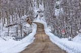 Winter road with snow - 243256226