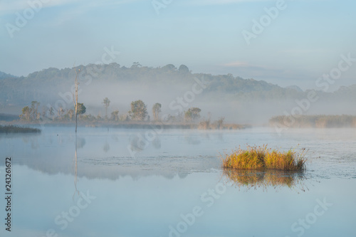 Morning mist hang low over lake during winter at wildlife conservation park in Thailand