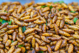 Fried bamboo worms in thai local market.