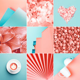 Collage made of nine photos in trendy coral color. Trendy color of 2019. - 243290871