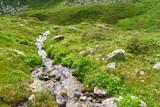 Kleiner Gebirgsbach in den französischen Alpen - 243294202
