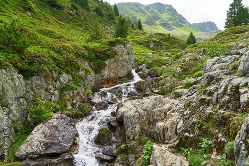 Gebirgsbach in den Alpen im Sommer