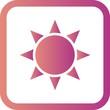 Vector Brightness Icon