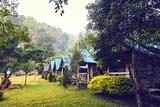 Local houses in chiang mai, sleeping house during treeking - 243316268