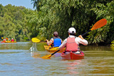 People row in kayak. Recreation concept. Woman in red kayak. Girl paddling in the calm Danube river near the shore with green trees. - 243318248