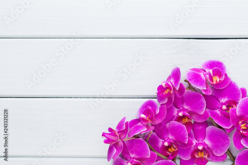 Beauty orchid on a gray background. Spa scene. - 243321228
