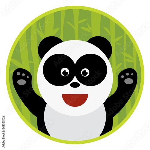 Vector flat hand drawn cartoon animal panda bear