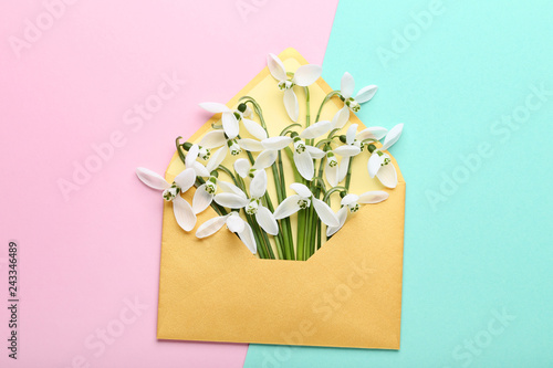 Snowdrop flowers in envelope on colorful background