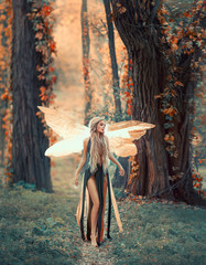 Incredible fairy walks in the autumn forest. A blonde girl with very long hair, unusual styling. Elf in a green dress with glowing, golden wings. Background of huge old trees entwined with ivy